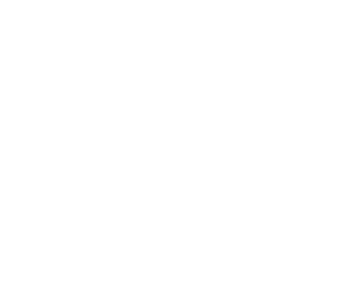 Rug Specialist